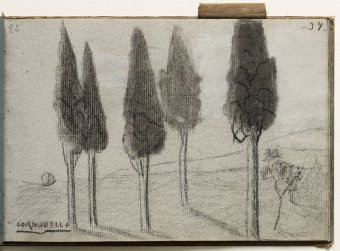Cornudella. Landscape with cypresses