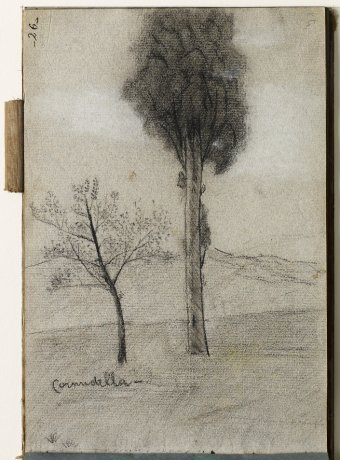 Cornudella. Landscape with trees