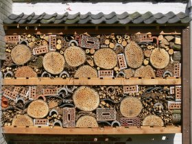 Insect Hotel Workshop